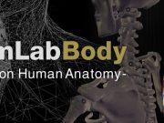 team-lab-body