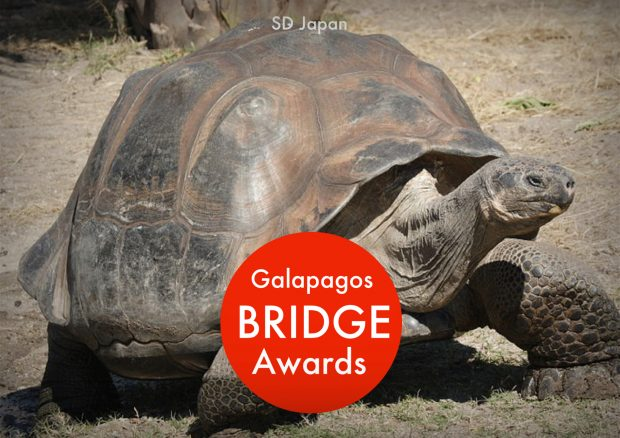 galapagos bridge awards