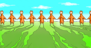 alpaca-evolution-begins