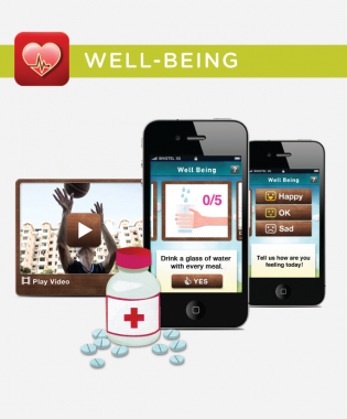Silverline-app-for-elderly-02.png-315x380