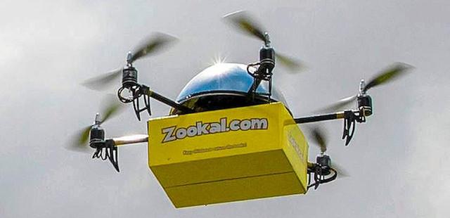 zookal1