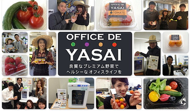 office-de-yasai_featuredimage