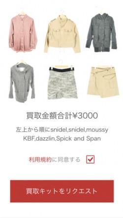 Sustina-selling-kit