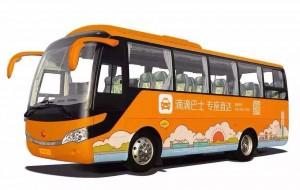 Didi-Bus-logo-300x190