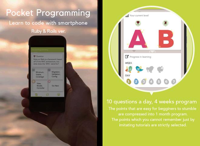 Pocket Programming