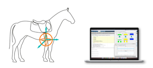 20151114_horse03