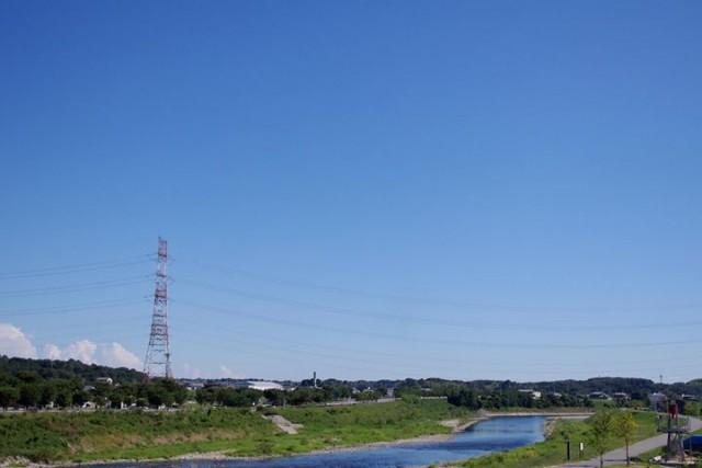 Sonice-Garden-blog