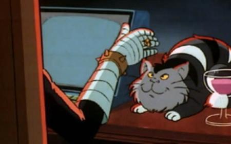 cat-DHH