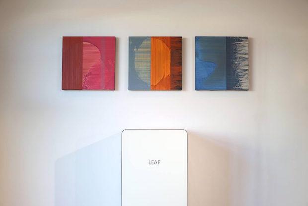 leaf-620x414