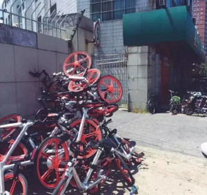 Mobikes, which has taken multiple cities by storm, suffer vandalism and are piled to be sold as scrap metal.