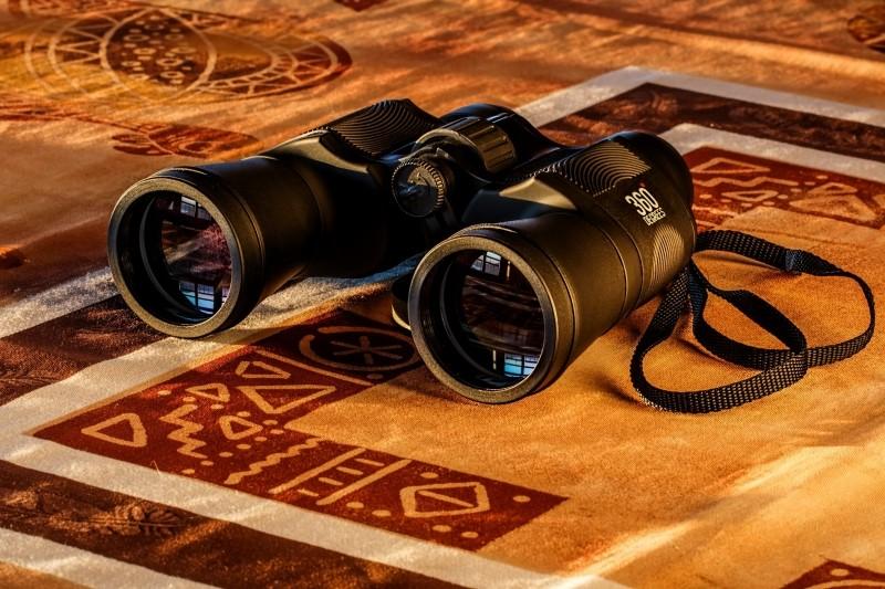 binoculars-birdwatching-spy-glass-spying-dawn-spy.jpg
