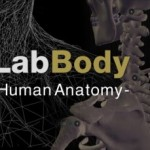 team-lab-body-620x229