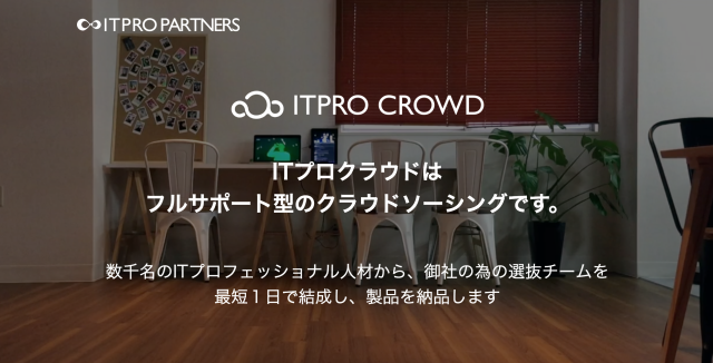 IT-Pro-Crowd